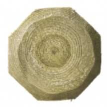 Piquet de clôture  bois  traité