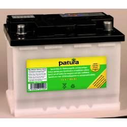Batterie 12 volt spéciale clôture électrique Patura